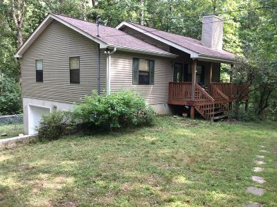 Kingston Springs Single Family Home For Sale: 1315 Lonesome Pine Rd