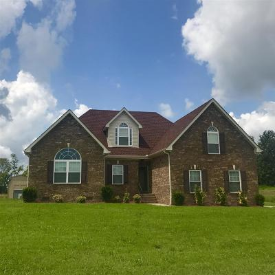Rutherford County Single Family Home For Sale: 729 Indian Park Dr