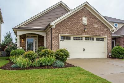 Spring Hill Single Family Home For Sale: 1028 Hemlock Dr