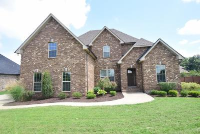 Rutherford County Single Family Home For Sale: 214 Ed Todd Ct