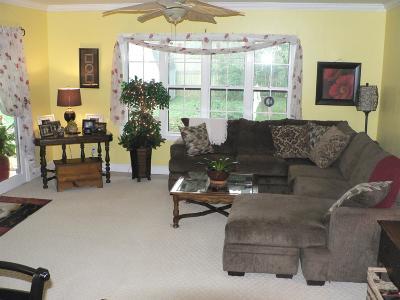 Nashville Single Family Home For Sale: 475 Hogan Rd