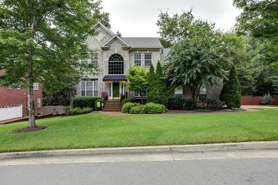 Nashville Single Family Home For Sale: 413 Wf Rust Ct