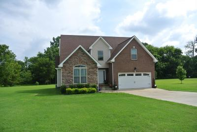 Christian County, Ky, Todd County, Ky, Montgomery County Single Family Home For Sale: 1042 Taits Station Drive