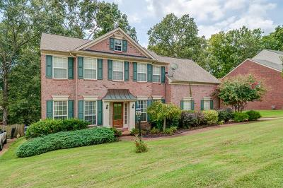 Hendersonville Single Family Home For Sale: 194 Spy Glass Way