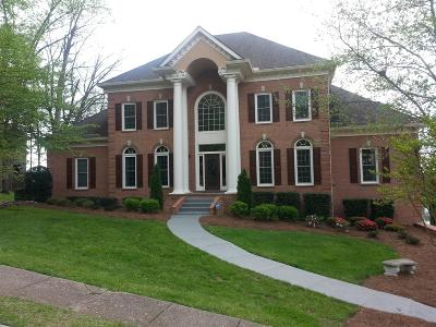 Hendersonville Single Family Home For Sale: 119 Spy Glass Way