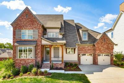 Franklin Single Family Home For Sale: 291 Rich Circle