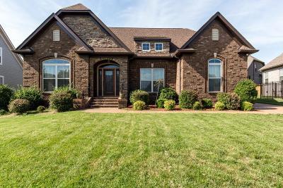 Mount Juliet Single Family Home For Sale: 220 Karen Dr