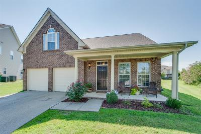 Spring Hill Single Family Home For Sale: 3002 Hope Circle