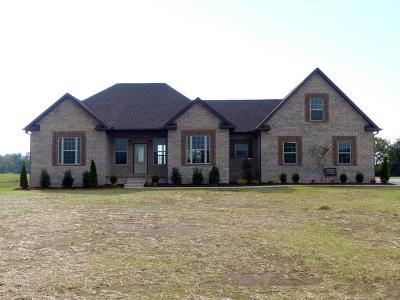 Portland Single Family Home For Sale: 125 Wind Wood Drive