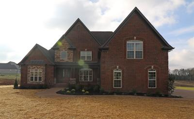 Mount Juliet Single Family Home For Sale: 1311 Stovall Lane