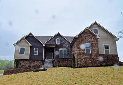 Clarksville Single Family Home For Sale: 324 Brigg Dr (Lot # 33)