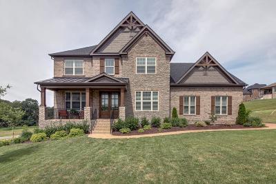 Nolensville Single Family Home For Sale: 1105 Waterbridge Dr