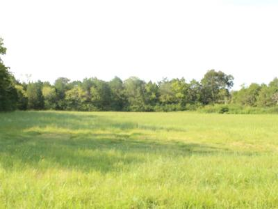 Murfreesboro Residential Lots & Land For Sale: 773 Cranor Rd