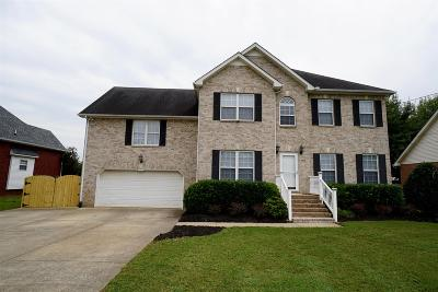 Smyrna Single Family Home For Sale: 614 Glenties Dr