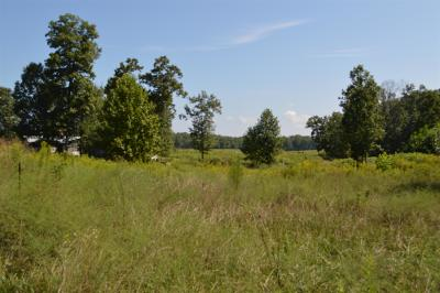 Gruetli Laager Residential Lots & Land For Sale: 245 Gipson Ln