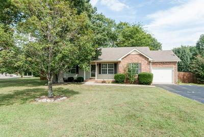 Smyrna Single Family Home Under Contract - Showing: 306 Lahinch Ln