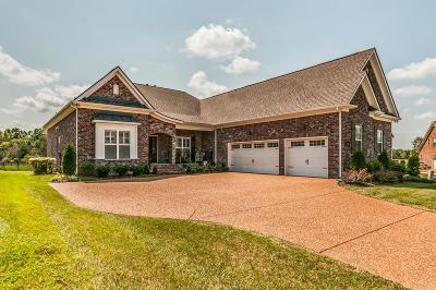Nolensville Single Family Home For Sale: 3271 Burris Dr