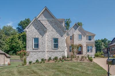 Hendersonville Single Family Home For Sale: 149 Fountain Brooke Dr, Lot 81