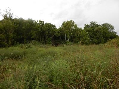 Lawrenceburg Residential Lots & Land For Sale: 1225 West Gaines