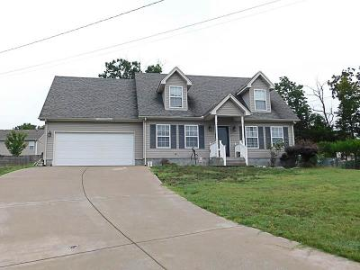Smyrna Single Family Home For Sale: 805 Clouddale Ct