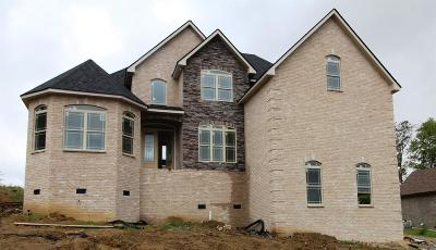 Nolensville Single Family Home For Sale: 209 Sweet Maple Knoll (Lot 20)