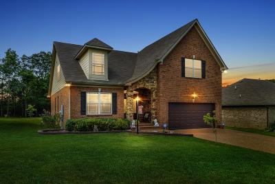 Mount Juliet Single Family Home For Sale: 324 Sword Ln