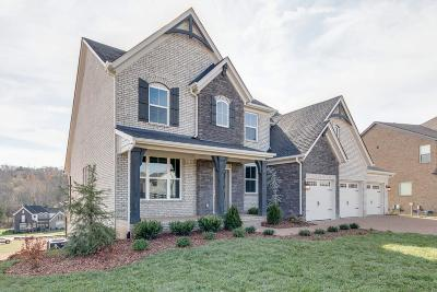 Nolensville Single Family Home For Sale: 330 Crescent Moon Circle #238