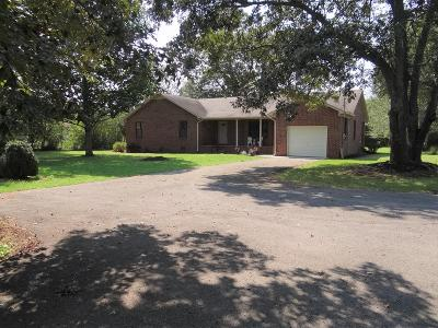 Smithville Single Family Home Under Contract - Showing: 1161 S Mountain Street