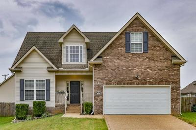 Spring Hill  Single Family Home For Sale: 1045 Golf View Way