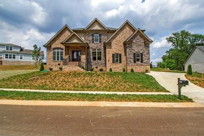 Nolensville Single Family Home For Sale: 5100 Falling Water Rd.