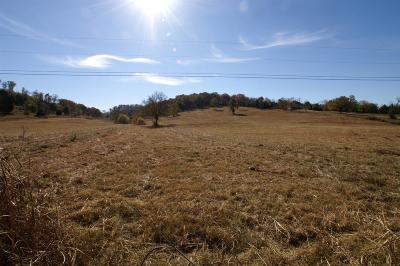 Columbia Residential Lots & Land For Sale: 1166 Cranford Hollow Rd