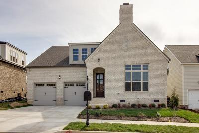 Nolensville Single Family Home For Sale: 818 Nolenmeade Pl Lot 5