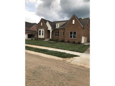 Nolensville Single Family Home For Sale: 837 Nolenmeade Pl Lot 19