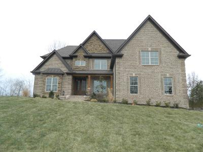 Mount Juliet, Mt Juliet, Mt. Juliet Single Family Home For Sale: 233 Laycrest Drive