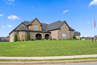 Clarksville Single Family Home For Sale: 3100 Randle Brothers Ln
