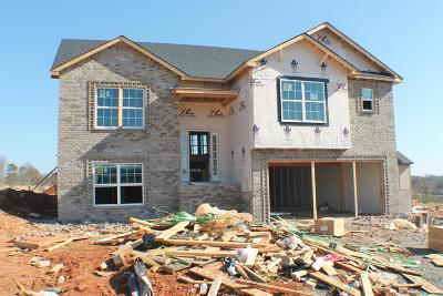 Clarksville Single Family Home For Sale: 485 Mirren Circle