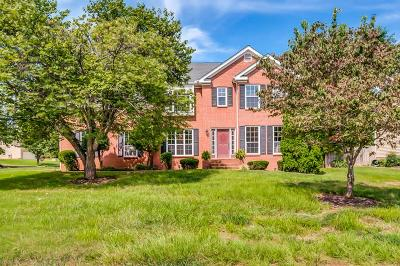 Spring Hill Single Family Home For Sale: 1701 Witt Way Dr