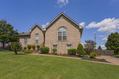 Davidson County Single Family Home For Sale: 1066 Nesbitt Drive
