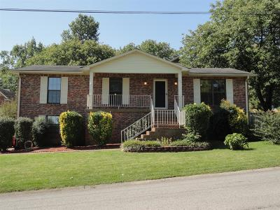 Hendersonville Single Family Home For Sale: 100 Red Maple Ct