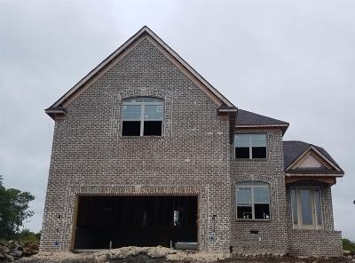 Mount Juliet Single Family Home For Sale: 616 Southshore Pt