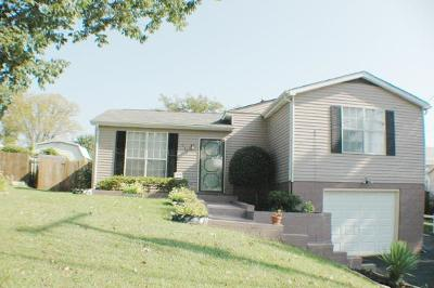 Davidson County Single Family Home For Sale: 949 Mallow Dr