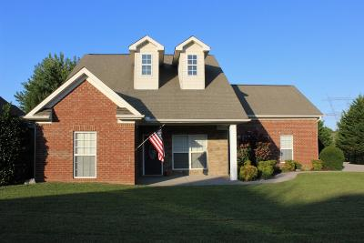 Spring Hill  Single Family Home For Sale: 4002 Lilac Ln