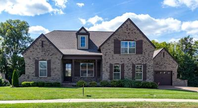 Williamson County Single Family Home For Sale: 4009 Old Light Cir
