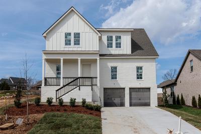 Nolensville Single Family Home For Sale: 8037 Warren Drive