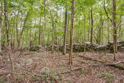 Residential Lots & Land For Sale: 275 Clift Ln
