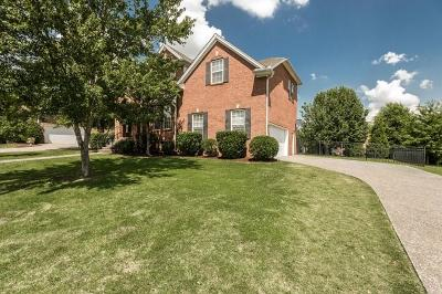 Hendersonville Single Family Home For Sale: 113 Dalton Cir