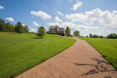 Franklin Single Family Home For Sale: 2733 McLemore Rd