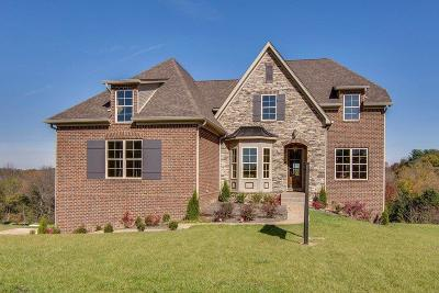 Goodlettsville Single Family Home For Sale: 9 Copper Creek Dr