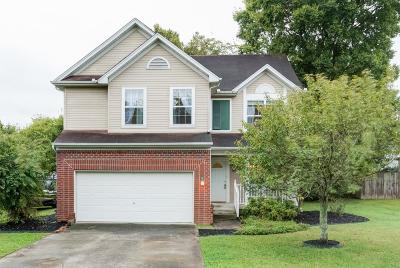 Smyrna Single Family Home Under Contract - Showing: 2181 Rocky Fork Rd