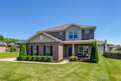 Spring Hill Single Family Home For Sale: 1004 Tunstall Way